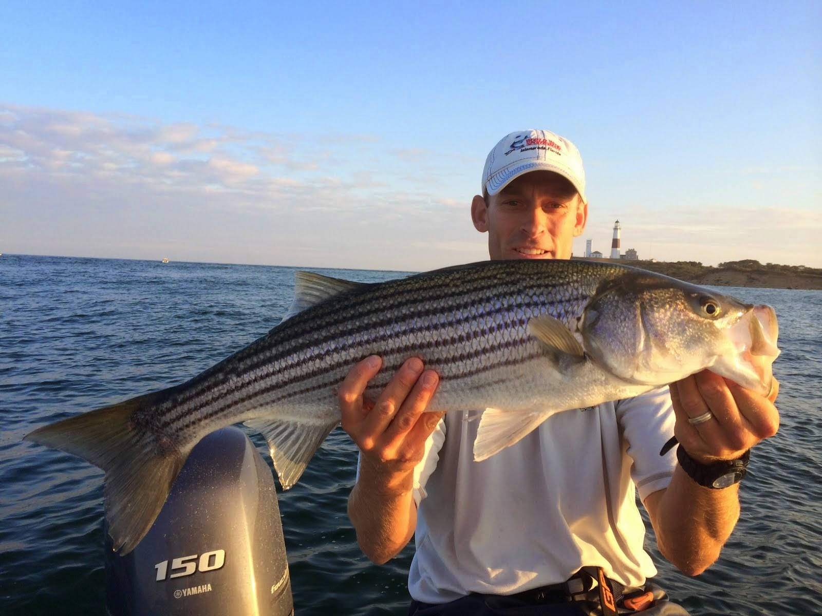 Jersey cape guide service montauk fishing report for Fishing report nj