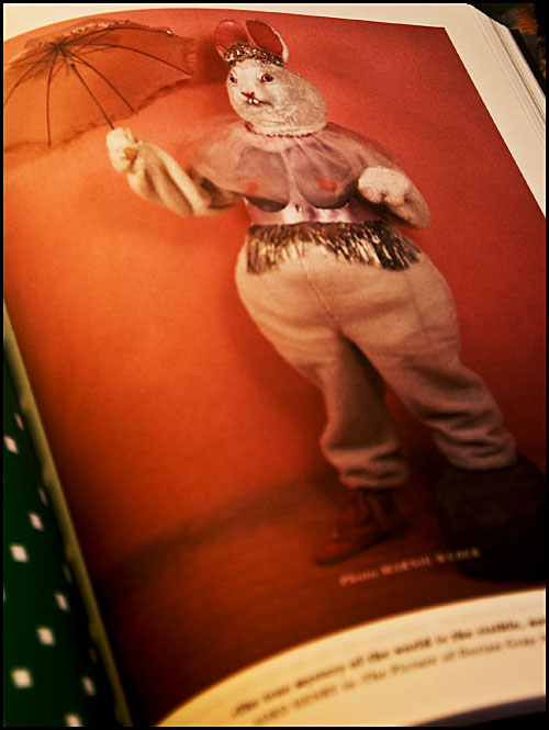 Psynopsis Circus Magazine The Bloggers' Bookazine Weird Bunny