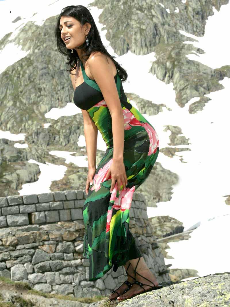 South Indian Actress Blue Film: Tamil Hot Actresses