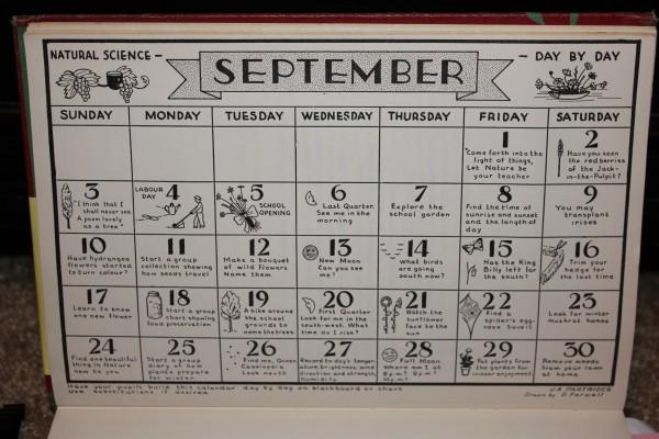 Natural Science Through The Seasons Calendar August