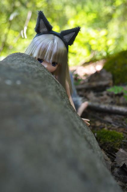 silver fox lien