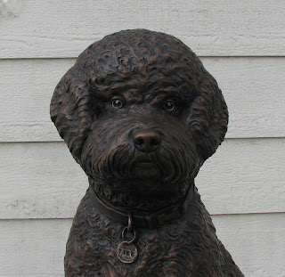 Custom bronze dog portrait|portuguese water dog by Lena Toritch