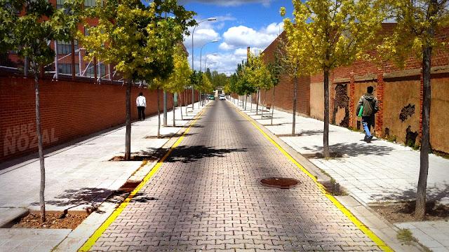 Avenida de Interés Turístico Internacional, 2013 Abbé Nozal
