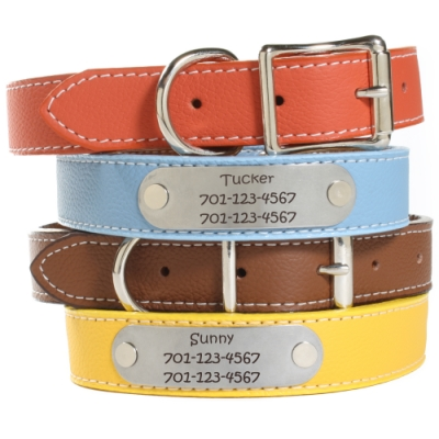 Take Smell Out Of Leather Dog Collar