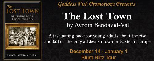 http://goddessfishpromotions.blogspot.com/2015/11/blurb-blitz-lost-town-by-avrom-bendavid.html