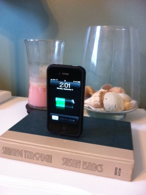 the diy treatment iphone ipod charging dock