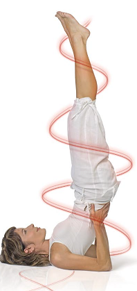 Es posible adelgazar cuanto sobre el practicar fitnes