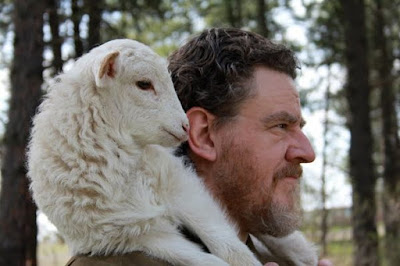 pastor, ovelha, ombros, rebanho