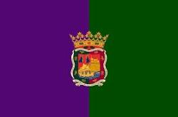 Bandera Málaga