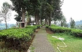 Tempat Wisata Pilihan Taman Wisata Riung Gunung Bogor