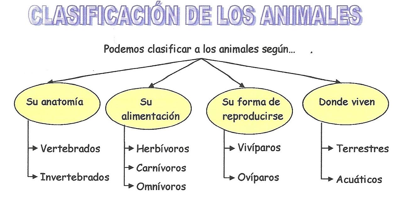 Clasificación de los animales según.
