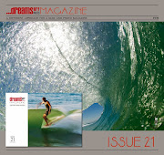 DREAMSURF Mag. issue 21 on line