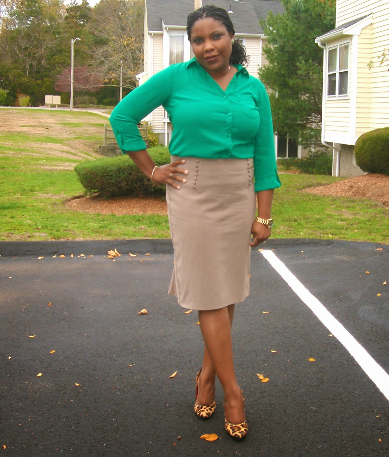 Ashton Blouse,The Limited, AGB Skirt, Macy's, Leopard Pumps