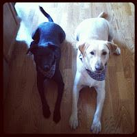 Remington and Charlie