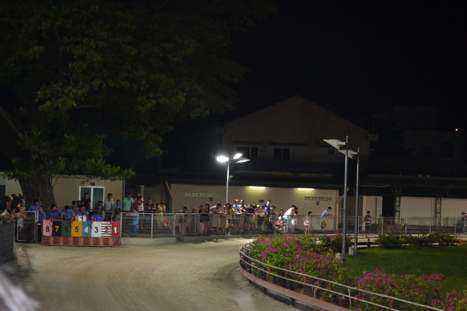 Greyhound racing, Vung tau