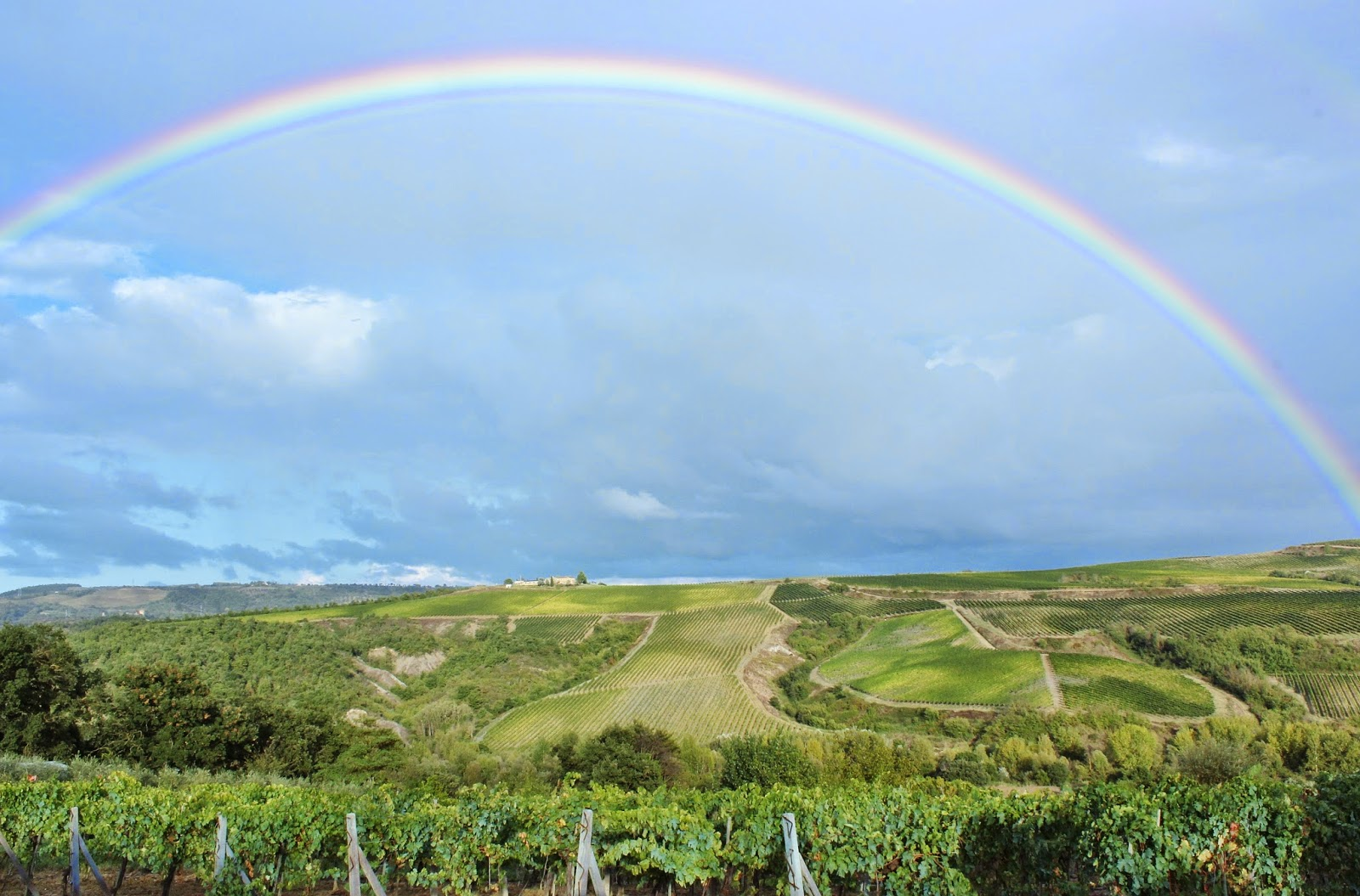 rainbow over vineyards in Orvieto Italy