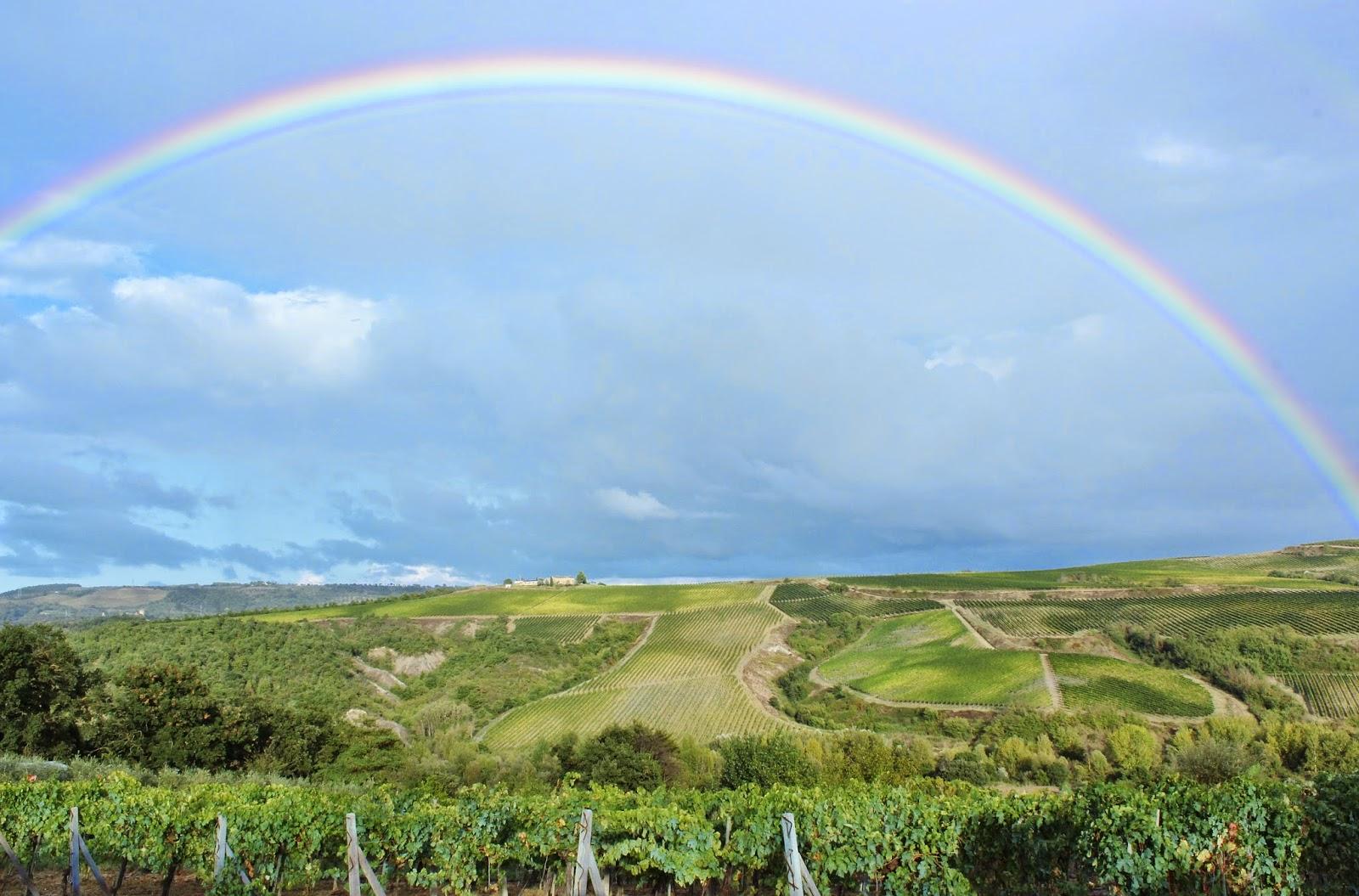 rainbow over vineyards in Orvieto Italy