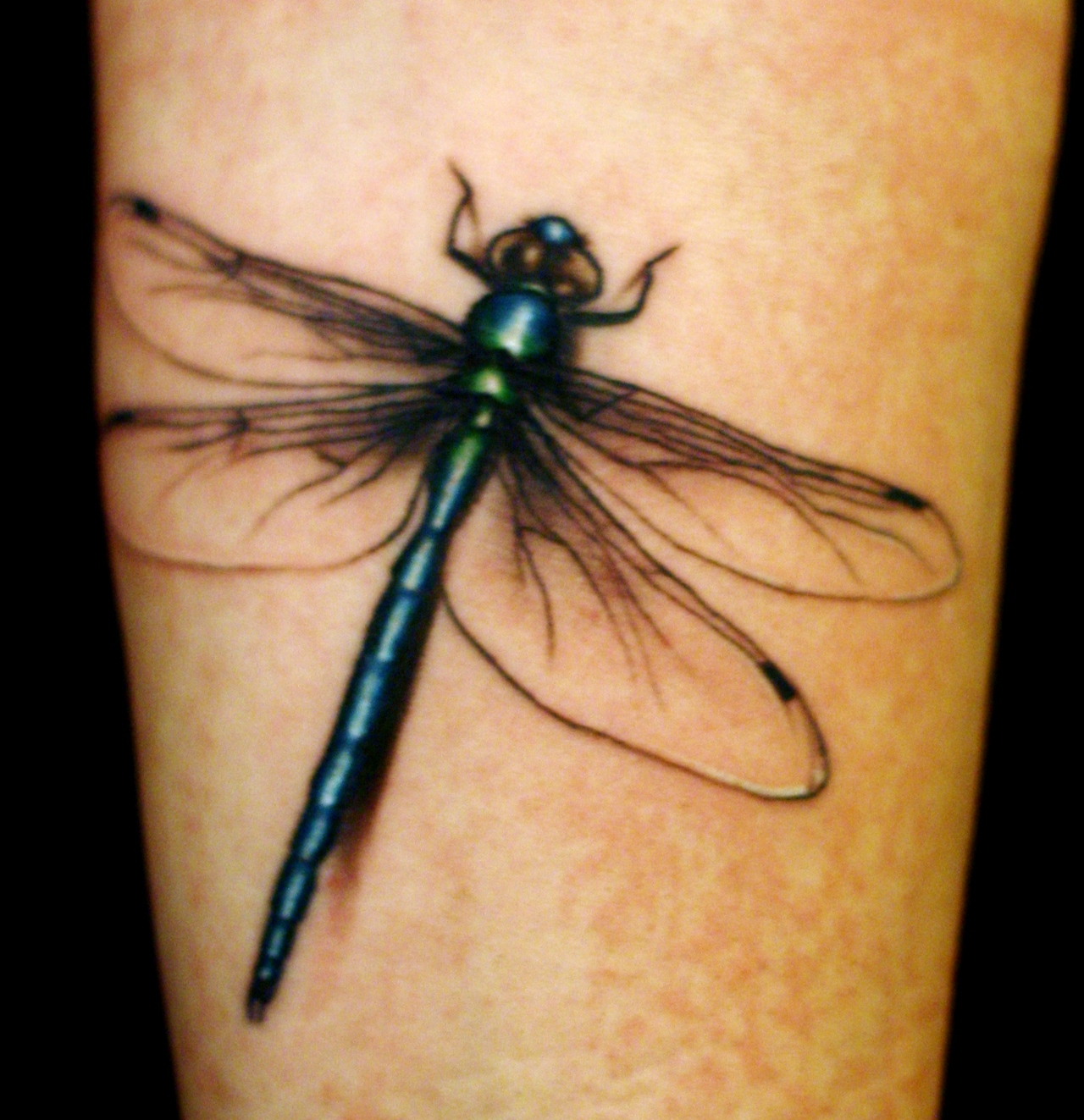 Tattoo Browse Determine Some Good Dragonfly Tattoo Designs As We Speak