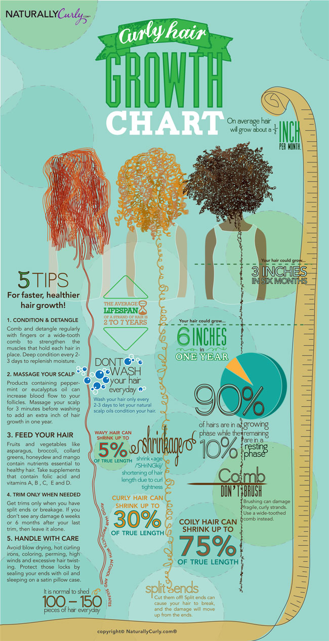 Natural In Nashville Curly Hair Growth Chart By