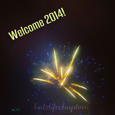 katzlifechapters.blogspot.com