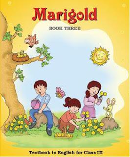 Marigold Class-3