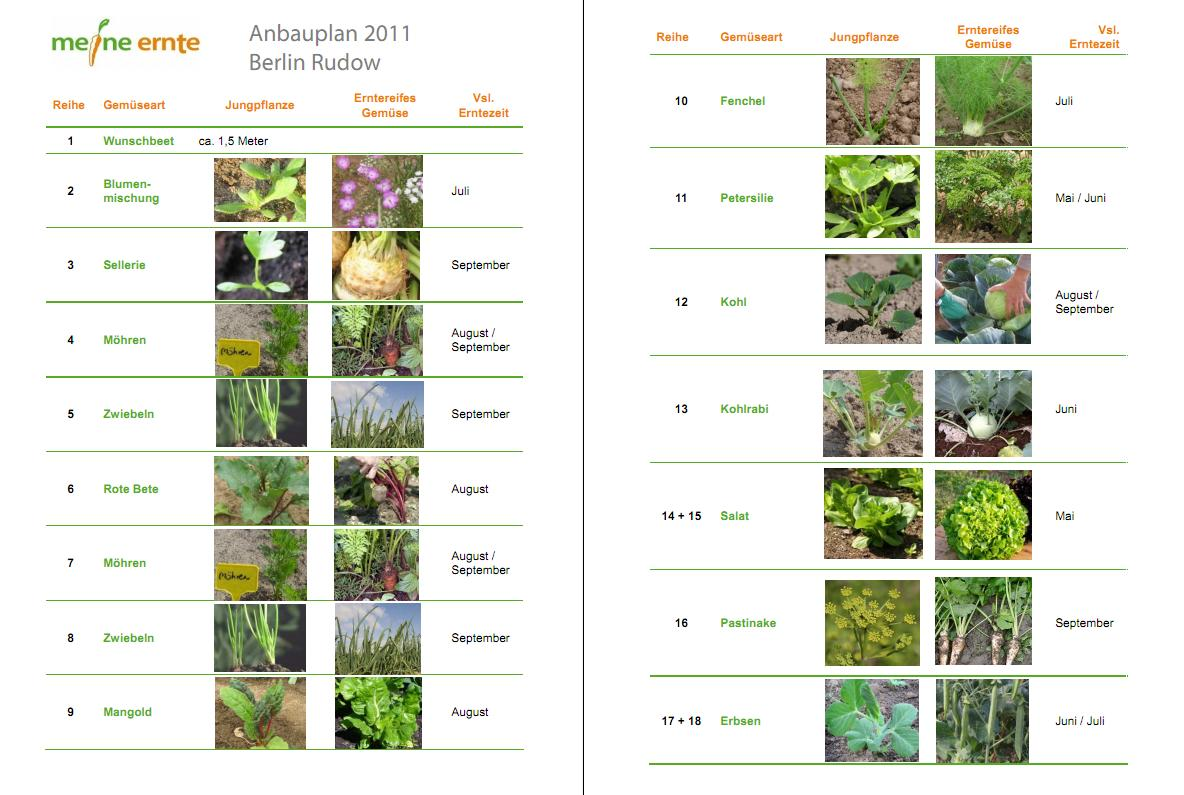 Gemusegarten Anlegen Pflanzplan: Gemüse