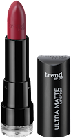 Preview: Die neue dm-Marke trend IT UP - Ultra Matte Lipstick 080 - www.annitschkasblog.de