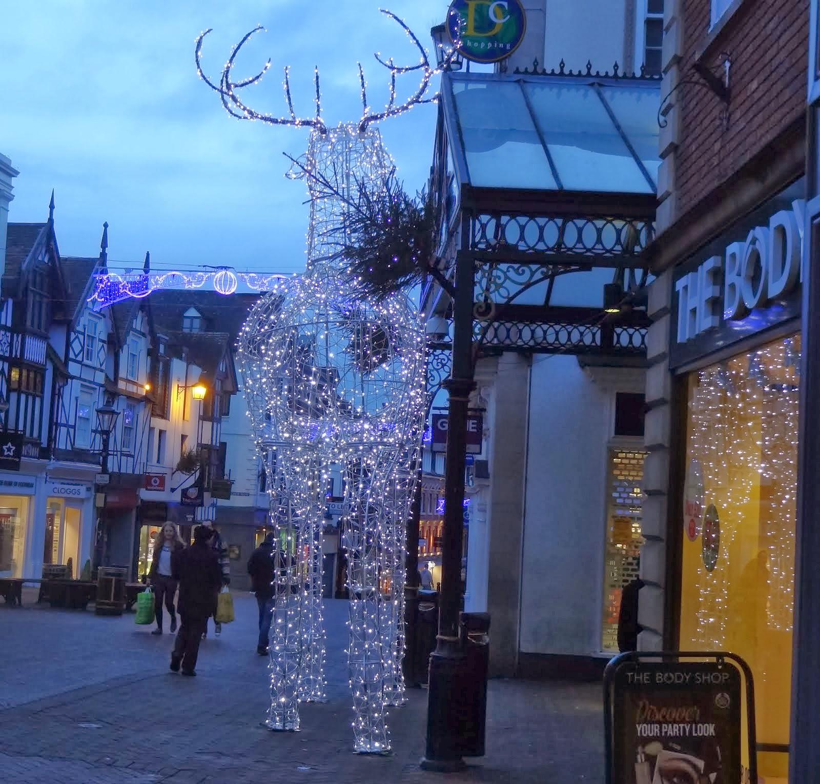 The Reindeer