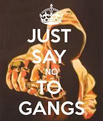 No Gangs
