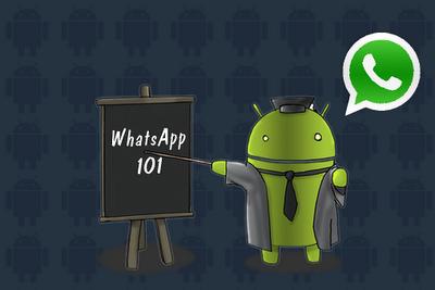 Whatsapp: KYD Evolution