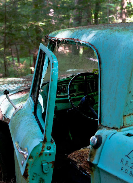 a rusting old Ford truck hidden in the forest, Grants Woods