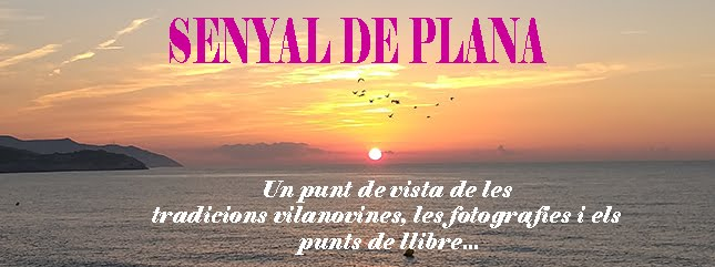 SENYAL DE PLANA