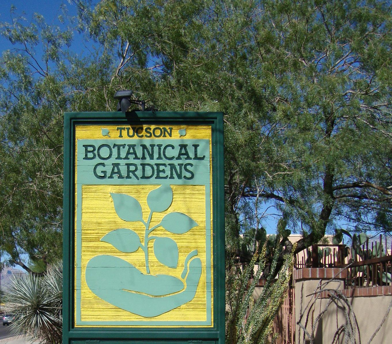 The Tucson Botanical Gardens