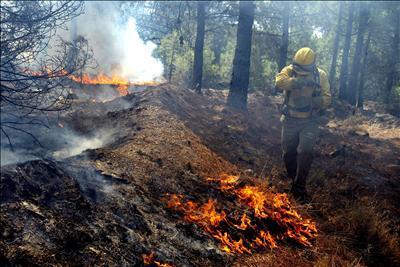 DÏA INTERNACIONAL PARA LA REDUCCIÓN DE DESASTRES NATURALES