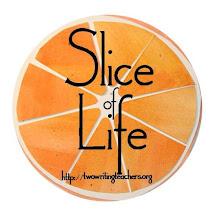 Slice of Life 2019