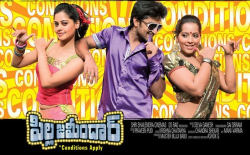 Pilla Jamindar (2011) Eng Sub – Telugu Movie DVD