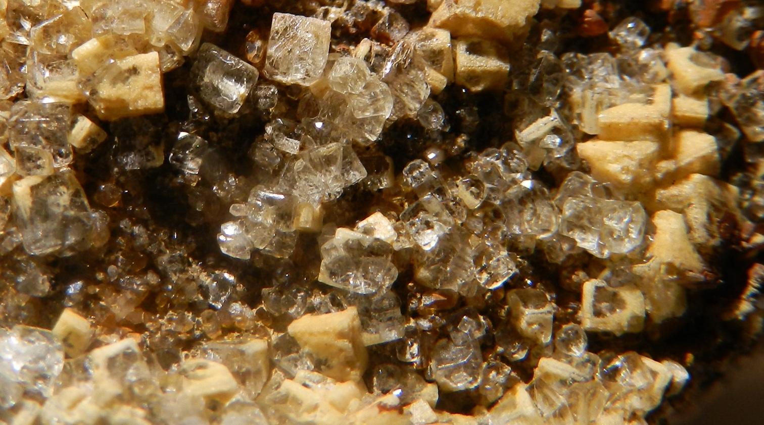 Fluorine du Bois du Roptai (Ave et Auffe) Detail1