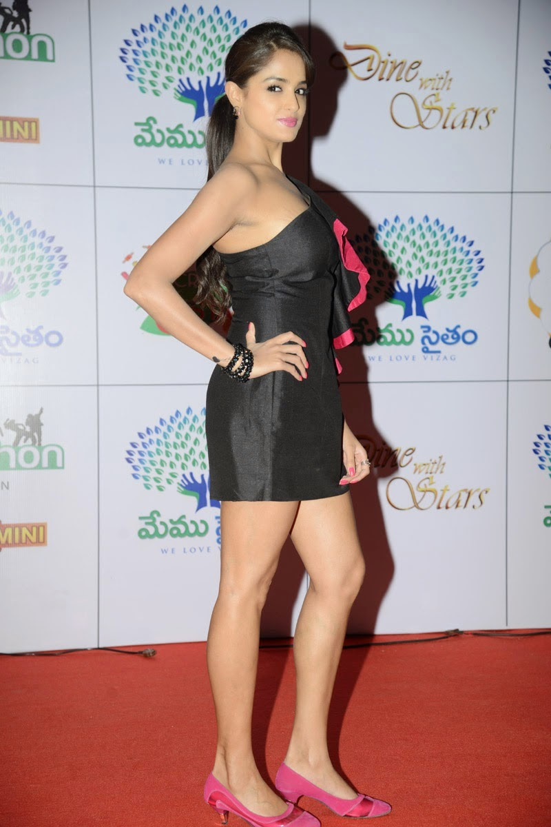 Asmita Sood At Dinner With Stars Glamorous Photos