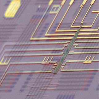 Programmable Nanowire Nanoprocessor