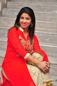 Geethanjali glam pics-thumbnail-14