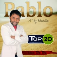 CD Top 20 Grandes Sucessos 2013/2014