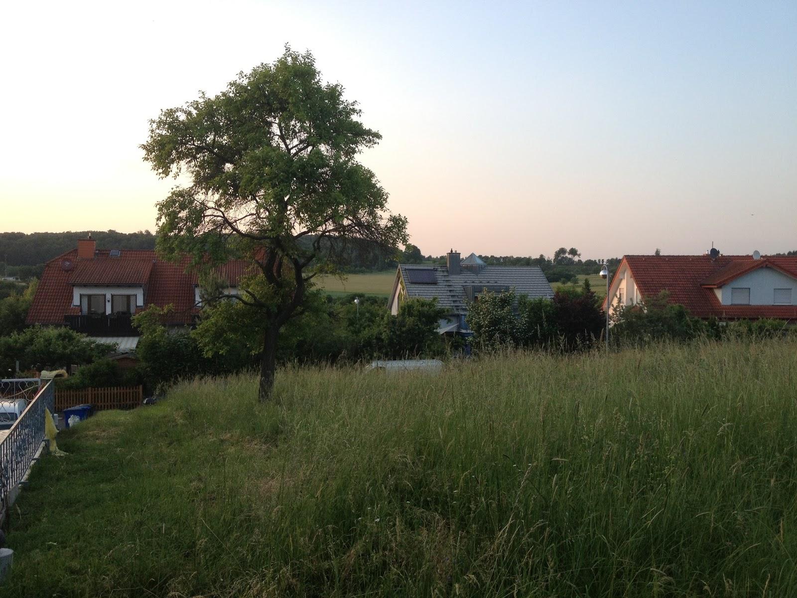 HUF Haus in Gießen: Juli 2013