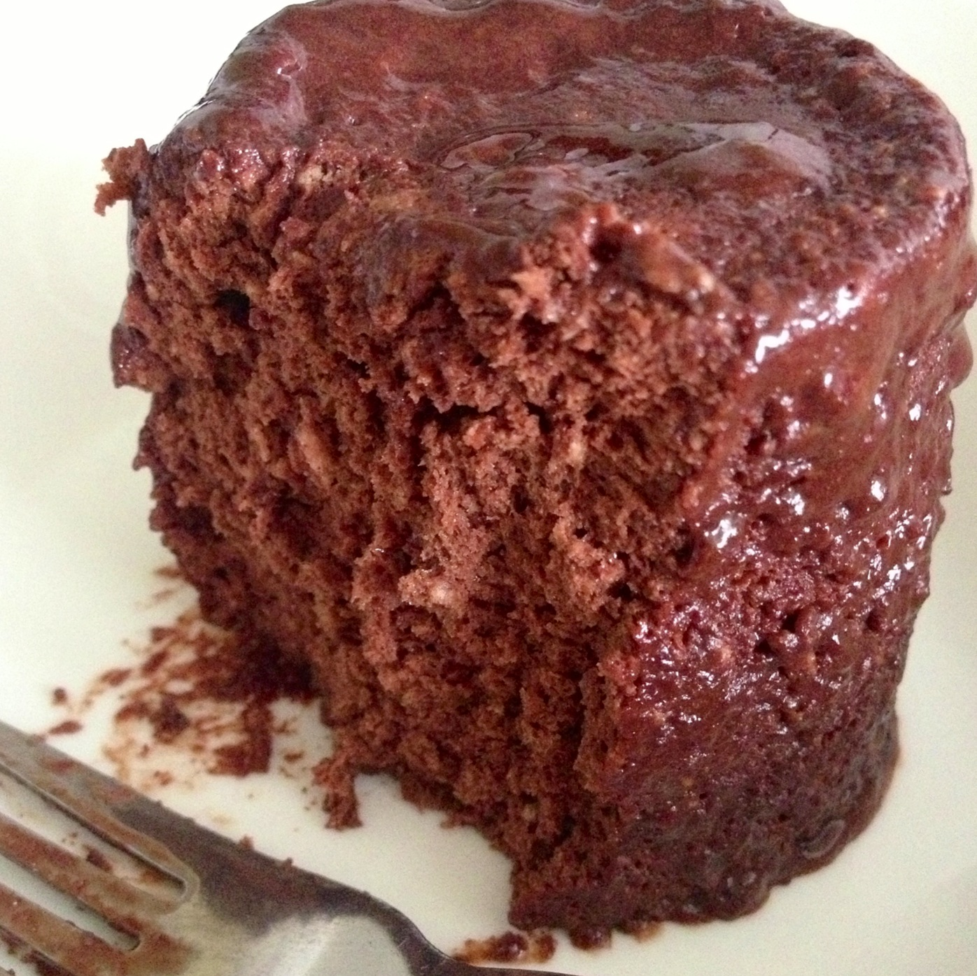Melfy Cooks Healthy Low Carb Chocolate Protein Mug Cake