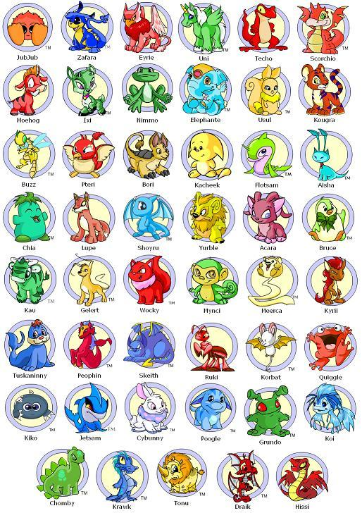 neopets how to train your pet