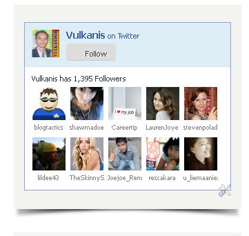 Cara Membuat Widget Twitter Fan Box