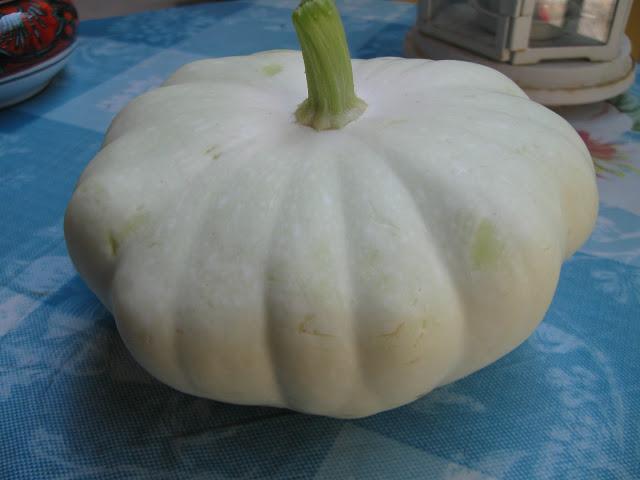 Le delizie della mia cucina la zucchina di miriam for La zucchina