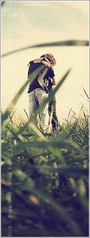 Awesome Love Profile Pictures:Display Pictures:2012