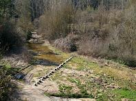Passera de la riera de Sorreigs situada a l'alçada de la masia de Guiteres
