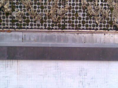 detalle fachada vegetal plaza luna madrid
