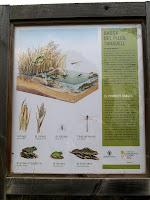 Plafó informatiu sobre la bassa del Pujol de Taradell